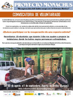 voluntariado demanda