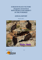 2014 report black vulture in Pyrenees (English)